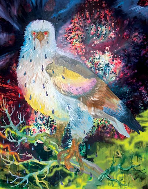 deonbegrepenregenboogvogel